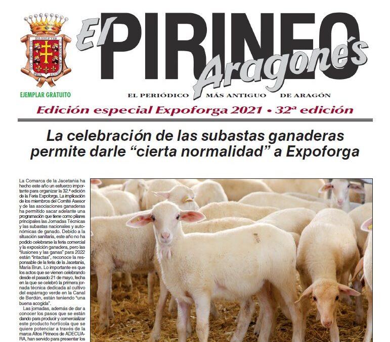 Edición Especial Expoforga 2021